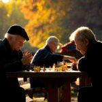 Stage auprès des âgés